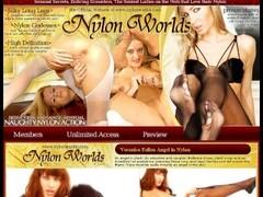Booby Pornstar spreading pussy in nylons Thumb