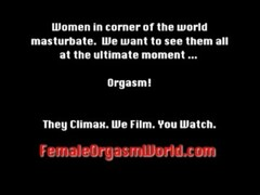 Pussy Pulsating Orgasms and Solo Masturbation Thumb